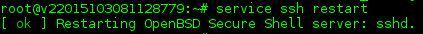 SSH neu starten