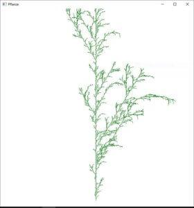 Pflanze 2
