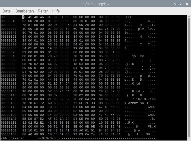 Hexedit Raspberry Pi
