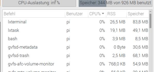 CPU Auslastung inf%