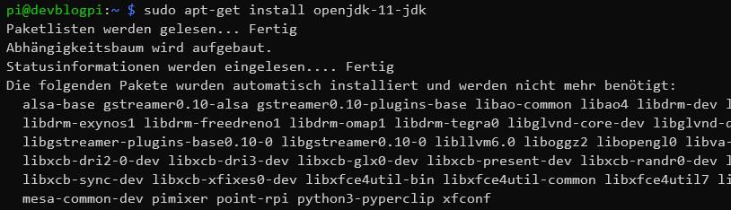 sudo apt-get install openjdk 11